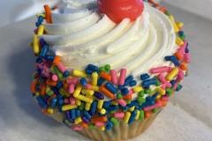 Funfetti Cupcake 3